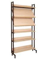 Шкаф-стеллаж комбинированный 2 наклонные и 4 горизонтальные полки