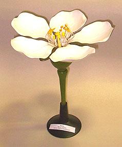 Макет цветка по биологии своими руками